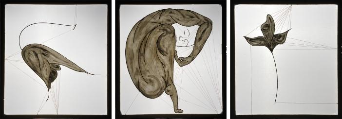 ''Elegia I. per fiore solo'', ''Il danzatore custode di sogni Dionimnee'', ''Elegia II. per fiore solo'' 108 x100cm ciascheduno,opere retroilluminate,2006