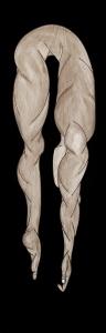 ''Il Tuffatore degli dèi Rèm Se II'' 210x67cm opera retroilluminata agosto 2009 & settembre 2014